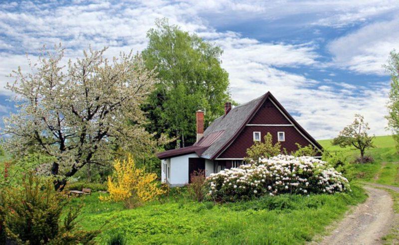 Wiosna w domu – wiosenne dodatki do domu